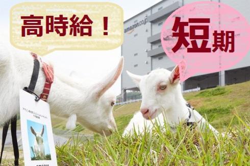 日本通運 アマゾン多治見事業所の画像・写真